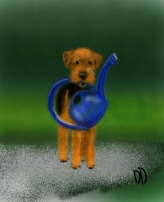 New puppy Augie stole my watering can