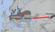 <b>MOVING OUT</b>  Around 5,000 years ago, the Yamnaya culture migrated both west and east from what is now Eastern Europe, bringing shared customs to the younger Corded Ware and Afanasievo cultures. A new study finds that the Yamnaya and Afanasievo cultures are genetically indistinguishable.