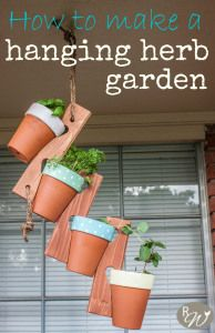 The cutest hanging herb garden