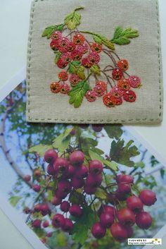 작년 그렸던 '산사나무' 열매에 색을 입혔어요~♧ 쏟아질듯 탐스러웠던 '산사나무' 열매 '산사나무' 열매의...