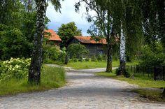 Polish countryside (Mazury Lakes)