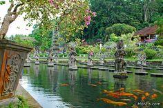 The Tirta Gangga royal water garden is a favourite retreat in the regency of Karangasem, east Bali. It was built in 1946 during the reign of the late raja of Karangasem, Anak Agung Anglurah Ketut Karangasem (1887 - 1966). Tirta Gangga saw a series of restorations following