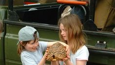 South Africa family holidays offer so much to discover, from safaris in the Kruger to the lights and bustle of Cape Town, the kids will never be bored. Travel With Kids, Family Travel, Private Safari, Game Lodge, Family Holiday, South Africa, How To Memorize Things, Children, Kid Stuff