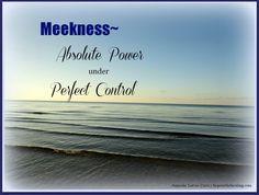 Meekness- Absolute Power under Perfect Control hopeinthehealing.com