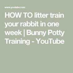 HOW TO litter train your rabbit in one week | Bunny Potty Training - YouTube