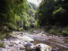 Surrounded by mountains on three sides, Kyoto has some brilliant hiking. There are good hikes right in the city and others just a short trai...