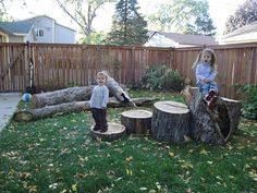 backyard natural playscape - wish I'd kept a few pieces from when they cut the tree down.