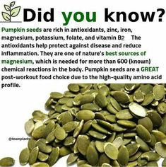 Who else loves pumpkin seeds?( - Eat more nuts and . Who else loves pumpkin seeds?( - Eat more nuts and seeds as a way to get more healthy fats, vitamins, and minerals into… Who Natural Health Remedies, Natural Cures, Natural Healing, Natural Foods, Natural Treatments, Natural Beauty, Herbal Remedies, Natural Oil, Health And Nutrition