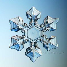 Amazing snowflake photography