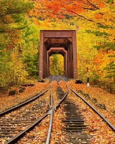 An old train trestle bridge and railroad tracks, through a forest of fall color in White Mountains New Hampshire, create a quintessential New England Autumn scene. Fall Pictures, Pretty Pictures, Amazing Pictures, Beautiful World, Beautiful Places, Wonderful Places, Fotografia Macro, Image Nature, Nature Photos