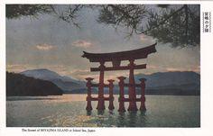 vintage illustration of a Torii Gate a 1950s postcard #vintagejapan #madeinjapan #japanese #1950'sjapan #toriigate #sunset