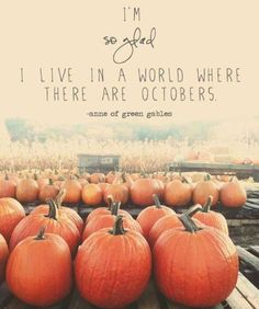 I'm so glad to live in a world where there are Octobers (and a weekly round-up) - Modern Mrs. Darcy