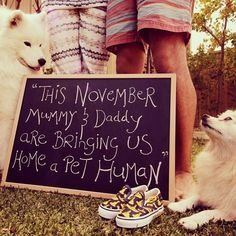 Pregancy announcement I'm expecting Pregnant. Pregnancy announcements with dogs by phoebe Babyshower, Pregnancy Photos, Pregnancy Announcements, Funny Pregnancy, Pre Pregnancy, Pregnant Dog, Pregnant Tips, Photos With Dog, My Bebe