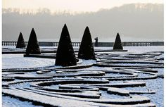 Snow covers the park of the Versailles castle on January 2009 in Versailles, France. France Winter, Patio Trees, Winter Crops, Public Garden, Winter Garden, Topiary, Versailles, The Great Outdoors, Outdoor Gardens