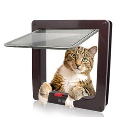 Kailian ® 4 Way Cat Puppy Locking Indoor/Outdoor For Window/Door * Find out more details by clicking the image : Cat Doors, Steps, Nets and Perches
