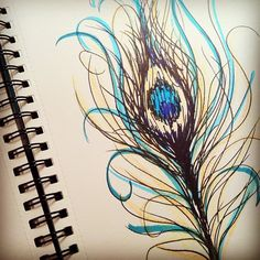 peacock feather sketch by ssylviadangg, via Flickr