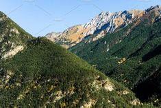 Mountain autumn landscape with colorful forest and high peaks. Alpine scene of coniferous and deciduous forests and high peaks close-up Mountain Landscape, Close Up, Scene, Autumn, Mountains, Nature, Travel, Color, Colour