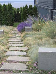 In an earlier post, I shared nine grasses that you can use for designing your garden landscape. Today, I am sharing some brilliant examples of landscapes and gardens that use ornamental grasses. Hard Landscaping Ideas, Gravel Landscaping, Landscaping Images, Gravel Garden, Garden Paths, Ornamental Grass Landscape, Lawn And Landscape, Ornamental Grasses, Landscape Design
