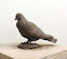 Animal Games, Sculpture, Animals, Pigeon, Animales, Animaux, Sculptures, Animal, Sculpting