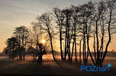 Fabianowo  [fot. M. Filipiak] #poznan #poland