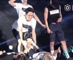 what is EXO beagle line (2/2)