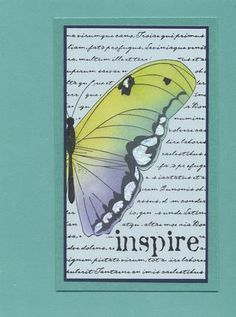colored butterfly over text