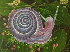 Snail, Illustration, Animals, Art, Art Background, Animales, Animaux, Kunst, Animal