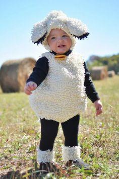 Disfraz oveja