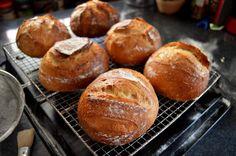 Cum se face maia naturală pentru pâine fără drojdie - rețeta de drojdie sălbatică | Savori Urbane Eggs Benedict Recipe, Breakfast Recipes, Muffin, Cookies, Food, Breads, Crack Crackers, Bread Rolls, Biscuits
