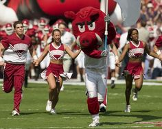 Here Come the Razorbacks Picture at Arkansas Razorback Photos