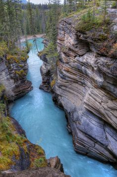 Athabasca Falls Canyon   Canada (by Susan M)