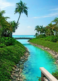 Gorgeous colors of One & Only Reethi Rah (photo by di_ablow, via Flickr)