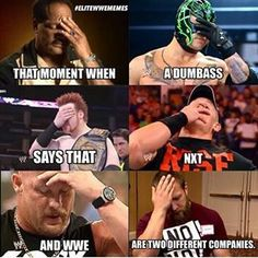Just because nxt belongs to wwe doesn't mean they are the same company. Wrestling Quotes, Wrestling Stars, Wrestling Wwe, Undertaker Wwe, Wwe N, Wwe Funny, Funny Memes, Hilarious, Wwe Quotes