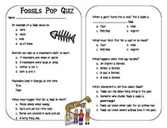 Four Types of Fossils Project ~ Hands-On Activity with Fossils ...