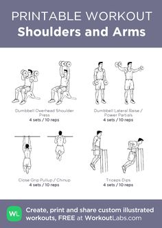 Shoulders and Arms · WorkoutLabs Fit Basic Gym Workout, Gym Workout Chart, Hiit Workout At Home, Workout Log, Squat Workout, Biceps Workout, After Workout, Toning Workouts, Easy Workouts
