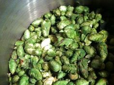 Homebrewing: Getting the Most Out of Hops