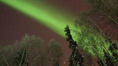 2-16-13 North Pole aurora - Amy Stratman - Fairbanks Daily News-Miner: Photo Of The Day