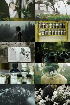 male herbalist aesthetic (requested) more here // request here