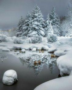 Nature's beauties.