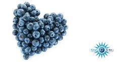 LEESTIP! Blauwe bessen zitten vol met antioxidanten, maar wat zijn antioxidanten nu precies? Op de website van Gezond Idee, een magazine van Maastricht UMC+, staat een interessant artikel met 9 weetjes over antioxidanten!