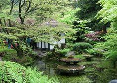 Google Image Result for http://2.bp.blogspot.com/_jW0fHcfb-L4/SQGMlA4-8KI/AAAAAAAAG1s/bQaH5M0RmPs/s400/Japanese_Zen-garden_15.jpg