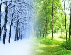 Winter vs. Summer lesson plan (pre-k-k)