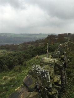 White Lea Moor, Bolsterstone, Sheffield, South Yorkshire.