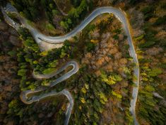 Curvy road trough atumn forest,aerial top down view Drone Photography, Slovenia, Curvy, Stock Photos, Sportswear, Vectors, Behance, Racing, Image