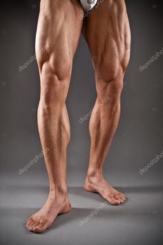 depositphotos_14249857-stock-photo-muscular-male-legs.jpg (682×1023)