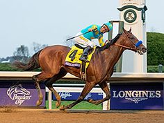 American Pharoah, the first Triple Crown winner to run in the Breeders' Cup, went out an emphatic winner Oct. 31 at Keeneland.