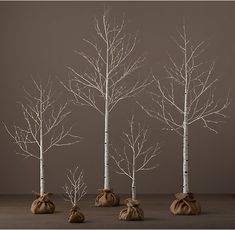 RH's Birch Winter Wonderland Tree - 5':Cultivate a winter forest with trees that lend a magical glow to indoor and outdoor settings. The branches, wrapped in birch or dusted in snow and warm-white lights, look elegant on their own or can be strewn with garlands and ornaments.