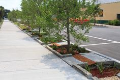 A group for discussion of the trend of Green Streets, particularly those using the public ROW, incorporating green infrastructure landscape techniques for mana… Urban Landscape, Landscape Design, Sponge City, Green Street, Water Management, Rain Garden, Plantation, Urban Planning, Sustainable Design