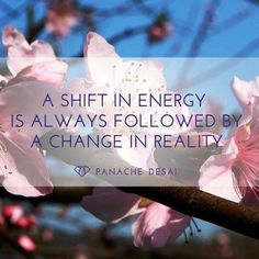 A shift in energy is a shift in reality.  We need to stop fighting the imaginary dragons outside and visualize a light of cosmic love flowing through our brain into our heart and out towards every person and the Earth and the cosmos.  Raise up the vibration to love because this will always defeat the lower vibrational frequencies through transmutation.