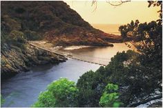 Garden Route Adventure Tour from Cape Town - Accommodated Adventure Activities, Adventure Tours, Travel Activities, Fun Activities, Tsitsikamma National Park, Safari, Provinces Of South Africa, Holiday Places, Hiking Trails